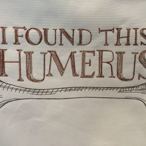 design-found-this-humerus